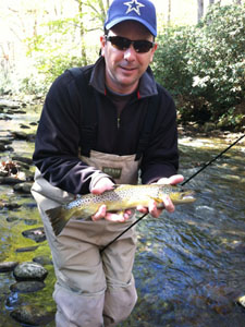 Davidson River fly fishing