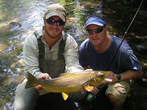 A big Davidson River brown trout