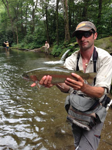 A Davidson River rainbow trout