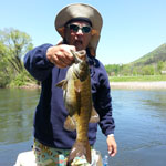 Asheville fly fishing guides fish Eastern Tennessee for Smallmouth Bass