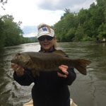 Asheville, NC fly fishing guides for Tennessee smallmouth