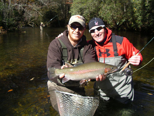 a big rainbow trout