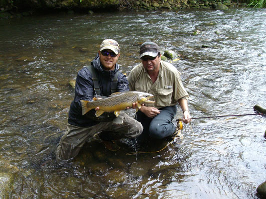 a big brown trout
