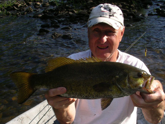 a smallmouth bass